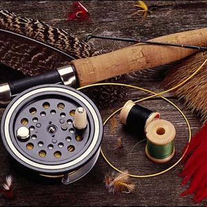 Охотничьи и рыболовные магазины Покрова